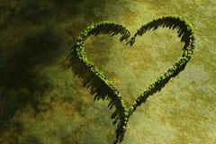 Ajardinar do coração Fotografia de Stock Royalty Free