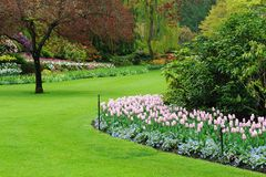Ajardinar do jardim Imagem de Stock