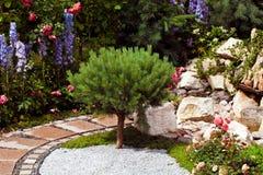 Ajardinar do projeto do jardim Fotografia de Stock Royalty Free