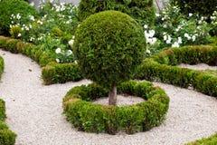 Ajardinar do projeto do jardim Imagem de Stock Royalty Free