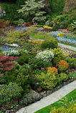 Ajardinar dos jardins Imagens de Stock