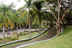 Ajardinar dos jardins Fotografia de Stock