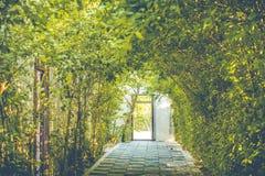 Ajardinar e passagens no parque Imagem de Stock Royalty Free