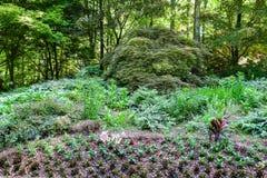 Ajardinar em um monte do jardim Imagens de Stock Royalty Free