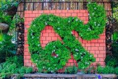 Ajardinar exterior com flores Imagem de Stock Royalty Free