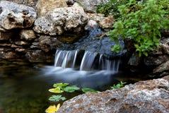 Ajardinar la característica natural de la cascada Fotos de archivo
