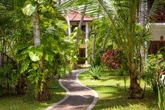 Ajardinar natural com o trajeto de pedra em um hotel tropical Fotos de Stock Royalty Free