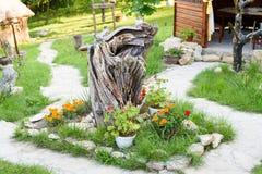 Ajardinar natural com plantas e flores Imagem de Stock Royalty Free