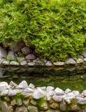 Ajardinar natural da pedra Foto de Stock Royalty Free