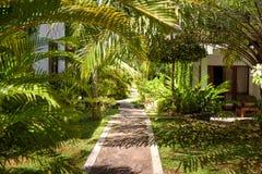 Ajardinar natural em um hotel tropical Imagens de Stock Royalty Free