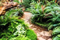 Ajardinar no jardim Fotografia de Stock Royalty Free