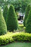 Ajardinar no jardim Fotografia de Stock