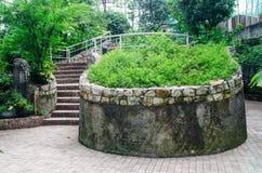 Ajardinar no jardim. A escada no jardim. Imagens de Stock