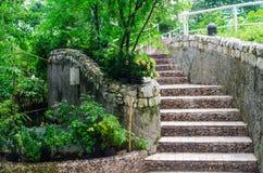 Ajardinar no jardim. A escada no jardim. Fotografia de Stock Royalty Free