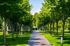 Ajardinar no jardim O trajeto no jardim Parte traseira bonita Imagens de Stock Royalty Free
