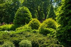 Ajardinar no jardim O trajeto no jardim Parte traseira bonita Foto de Stock