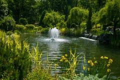 Ajardinar no jardim O trajeto no jardim Parte traseira bonita Fotografia de Stock Royalty Free