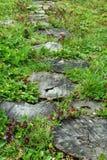 Ajardinar no jardim verde O caminho no parque, passagem curvada, passeio de madeira dos derramamentos entra o campo de grama Fotografia de Stock