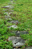 Ajardinar no jardim verde O caminho no parque, passagem curvada, passeio de madeira dos derramamentos entra o campo de grama Foto de Stock Royalty Free