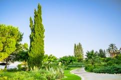 Ajardinar tropical com plantação e árvores Foto de Stock Royalty Free