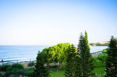 Ajardinar tropical com plantação e palmeiras Foto de Stock Royalty Free