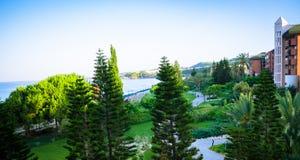 Ajardinar tropical com plantação e palmeiras Fotografia de Stock Royalty Free