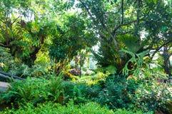 Ajardinar verde bonito com plantas e as flores bonitas Fotografia de Stock Royalty Free