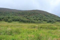 Ajardine à proximidade da vila Braemar em Escócia no verão Fotografia de Stock