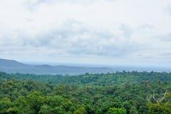 Ajardine árvores superiores com montanhas e o céu azul Imagem de Stock Royalty Free