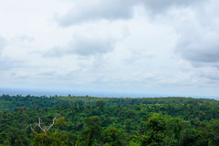 Ajardine árvores superiores com montanhas e o céu azul Fotografia de Stock Royalty Free