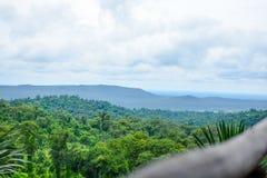 Ajardine árvores superiores com montanhas e o céu azul Fotos de Stock Royalty Free