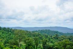 Ajardine árvores superiores com montanhas e o céu azul Imagens de Stock