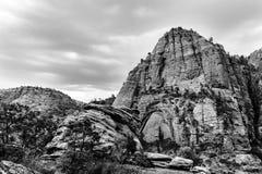 Ajardine acima na montanha em Zion National Park, EUA Fotografia de Stock Royalty Free