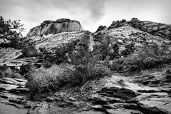 Ajardine acima na montanha em Zion National Park, EUA Imagens de Stock