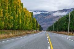 Ajardine alrededor de la carretera estatal 6, isla del sur de Nueva Zelanda fotos de archivo