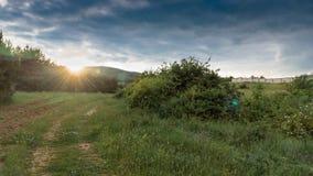 Ajardine, alvorecer ensolarado em um campo com céu cinzento Fotos de Stock Royalty Free