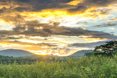 Ajardine, alvorecer ensolarado em uma montanha 1 Foto de Stock Royalty Free