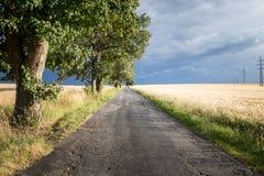 Ajardine antes das tempestades com a estrada rural sobre o campo de cereal Fotos de Stock Royalty Free