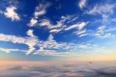 Ajardine antes do nascer do sol Imagens de Stock