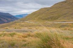 Ajardine ao lado da estrada da escala da coroa, Wanaka, Nova Zelândia Imagens de Stock