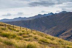 Ajardine ao lado da estrada da escala da coroa, Wanaka, Nova Zelândia Fotos de Stock
