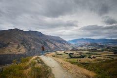 Ajardine ao lado da estrada da escala da coroa, Wanaka, Nova Zelândia Imagem de Stock Royalty Free