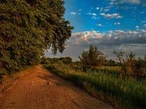 Ajardine as árvores da vegetação do céu das nuvens da natureza que nivelam nuvens largas do enrolamento da fuga da estrada de flo Fotos de Stock