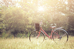 Ajardine a bicicleta do vintage da imagem com campo de grama do verão Fotografia de Stock Royalty Free