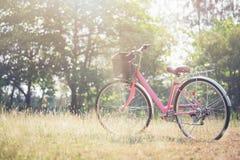 Ajardine a bicicleta do vintage da imagem com campo de grama do verão Fotos de Stock Royalty Free