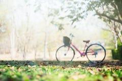 Ajardine a bicicleta do vintage da imagem com campo de grama do verão Imagens de Stock Royalty Free