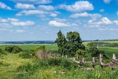 Ajardine, campo com um prado largo, deerviami e um azul Foto de Stock Royalty Free