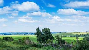 Ajardine, campo com um prado largo, deerviami e um azul Foto de Stock