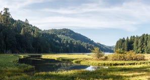 Ajardine a cena da água com as entradas maré de gramas do pântano, e de montanhas no fundo Imagem de Stock
