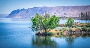 Ajardine cenas da natureza em torno do estado a do Rio Columbia Washington Imagem de Stock Royalty Free